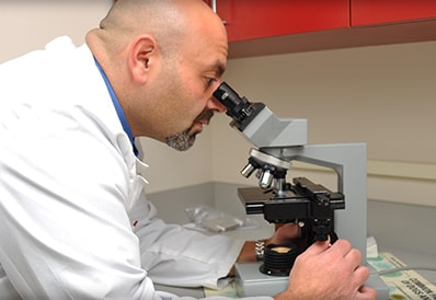 Microscopic Analysis at Tri-County Animal Hospital