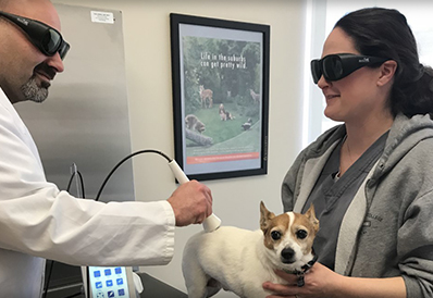 Cold Laser Therapy in Wayne NJ