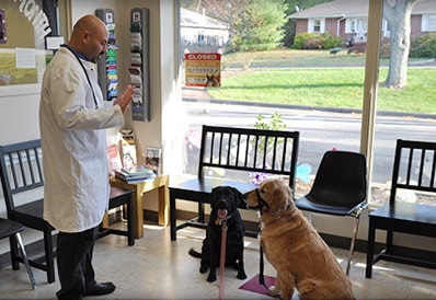 Pet behavior veterinarian in Wayne NJ